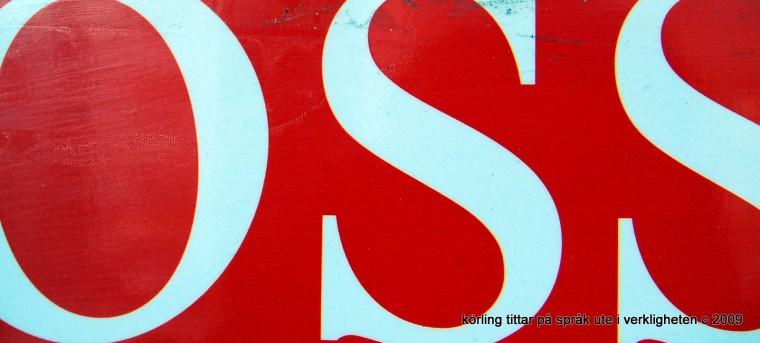 DSC_9135
