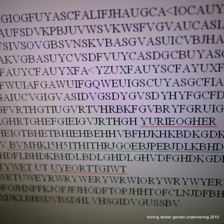 Körling fotograferar en sexårings skrivande på datorn! 2010