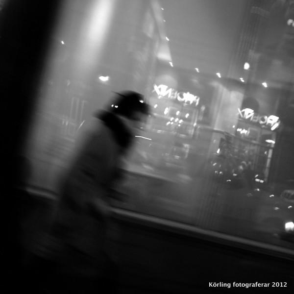 Körling fotograferar 2012