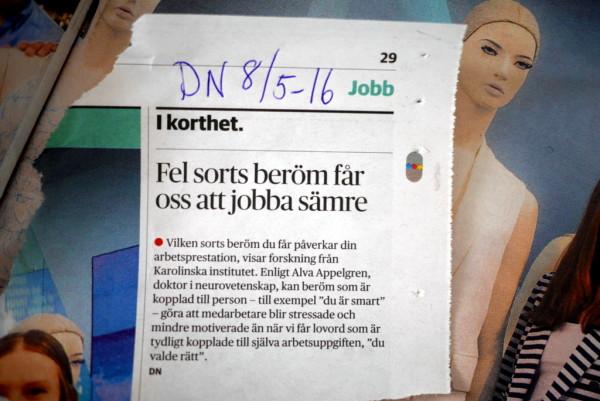 Ur Dagens Nyheter den 8 maj 2016